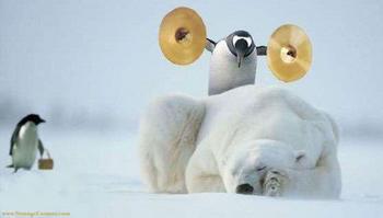 polarbear-thumb.jpg